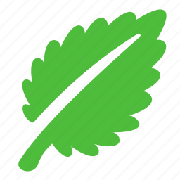 eco, grass, green, leaf icon