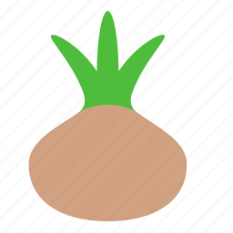 cooking, ingredient, onion, vegetable icon