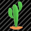 cactus, desert, floral, flower