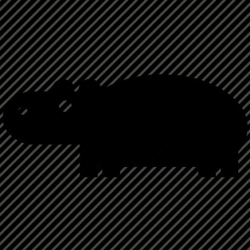 africa, hippo, hippopotamus, jungle, river, wild, wild life icon