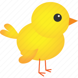 animal, baby, chicken, easter, farm, farming, yellow icon