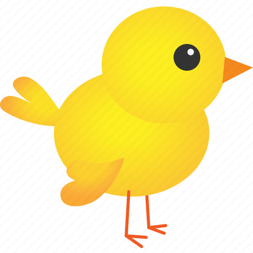 animal, baby, chicken, easter, farm, farming, yellow icon
