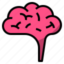 brain, creative, idea, organ icon