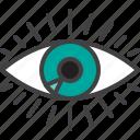 human, eye, vision, eyesight