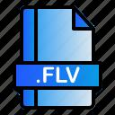 extension, file, flv, format