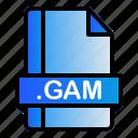 extension, file, format, gam