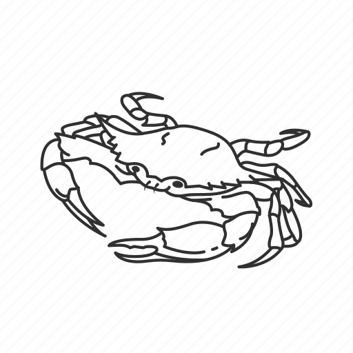 big crab, blue crab, crab, crustacean, large crustacean, seafood icon