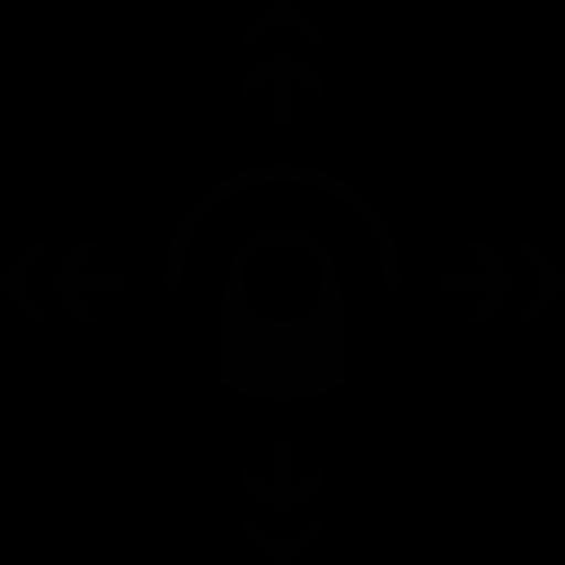 flick, omnidirectional icon