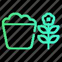 ecology, nature, plant, pot