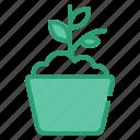 agriculture, farm, nature, pot