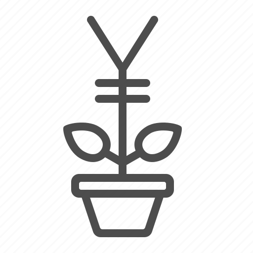 flower pot, investment, potted plant, startup, yen, yuan icon
