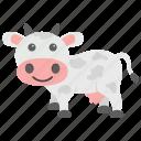 animal, calf, cattle, cow, farm