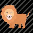 animal, lion, panther, wild animal, zoo