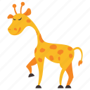 animal, camelopard, forest, giraffe, wild