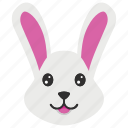 animal, bunny, cony, hare, rabbit