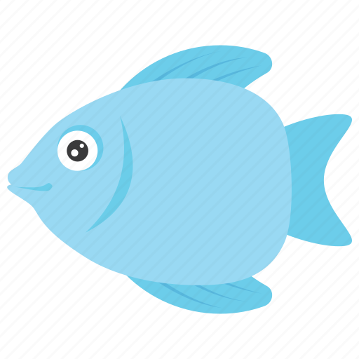 Animal, fish, goldfish, seafood, trout icon - Download on Iconfinder