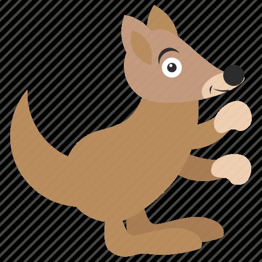animal, kangaroo, squirrel, wallaroo, zoo icon