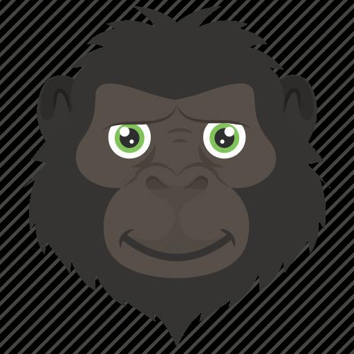 animal, baboon, chimpanzee, monkey, monkey face icon