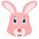 cony, hare, bunny, rabbit, animal