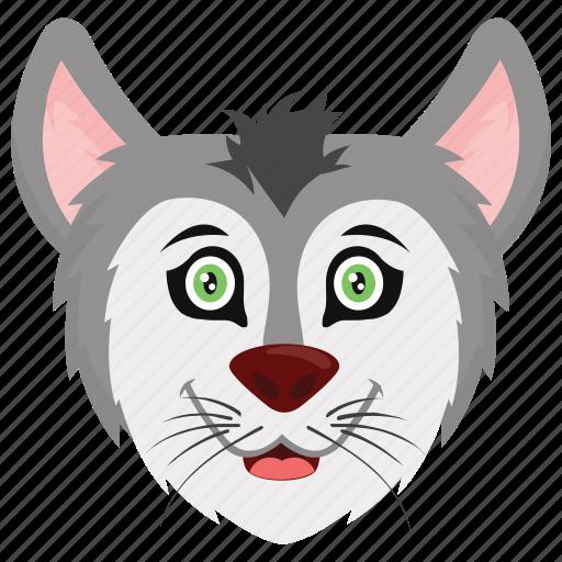 animal, cat, feline, kitty, pet icon