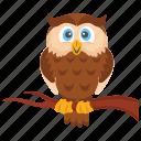 cute owl, owl, owl cartoon, owl character, owl drawing icon
