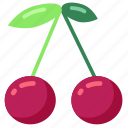 cherries, cooking, eat, food, fruit icon