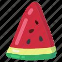 berry, fresh, fruit, summer, watermelon, watermelon slice