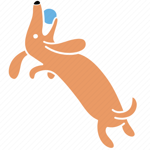 animal, ball, canine, dachshund, dog, pet, play icon