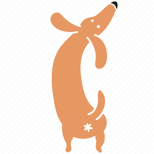 animal, ass, breed, butt, dachshund, dog, pet icon