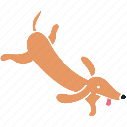 animal, breed, dachshund, dog, fly, pet icon