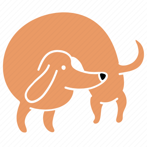 animal, canine, curl, dachshund, dog, hunch, pet icon
