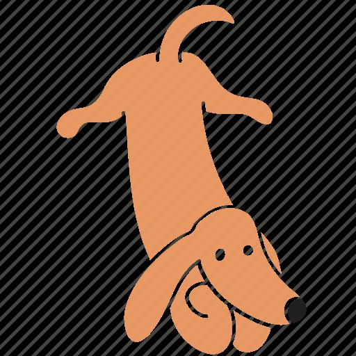 animal, attention, breed, dachshund, dog, listen, pet icon