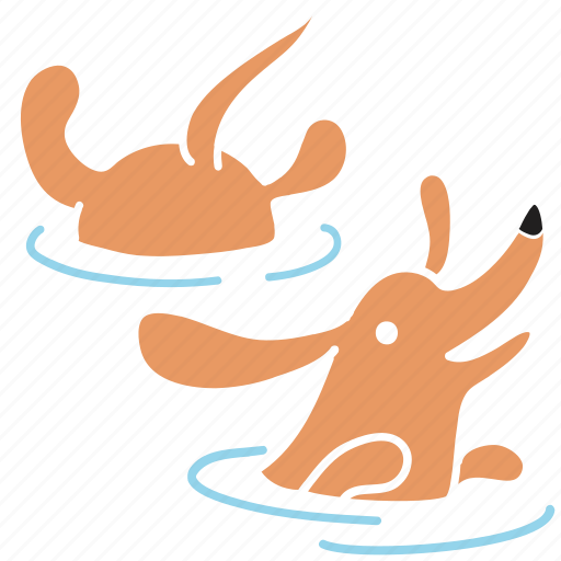 animal, breed, dachshund, dog, pet, swim, water icon