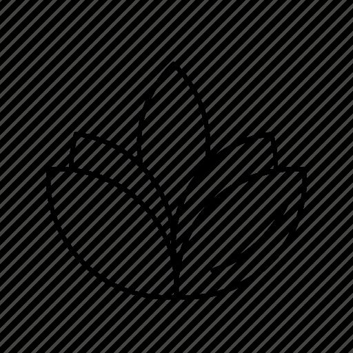 Celebration, diwali, flower icon - Download on Iconfinder