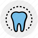 circle, dental, dentist, health, molar, stomatology, tooth icon