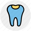 dental, molar with caries, dental protection, stomatology, healthcare