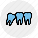 dental, dentist, stomatology, teeth, tooth