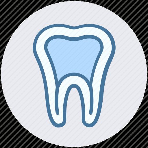 dental, dental treatment, dentist, oral health, stomatology, tooth icon
