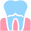 dental, dentist, pain, stomatology, teeth, tooth icon