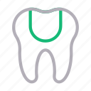 anatomy, medical, oral, teeth, tooth icon