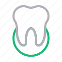 dental, healthcare, oral, teeth, tooth icon