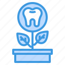 dental, dentist, medical, tooth icon