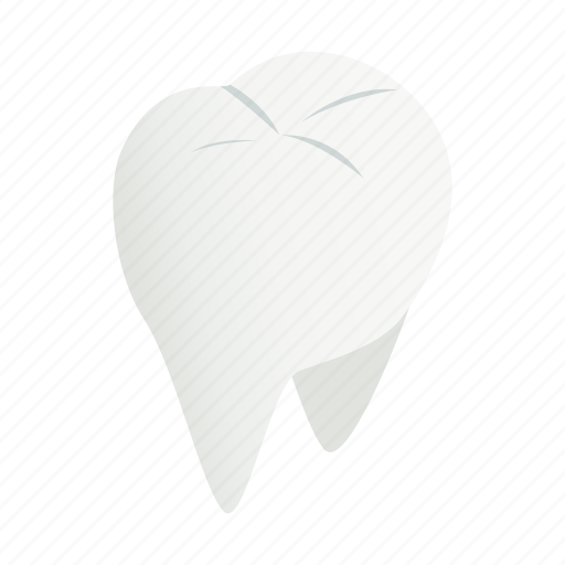 care, clean, dental, dentist, isometric, medical, tooth icon