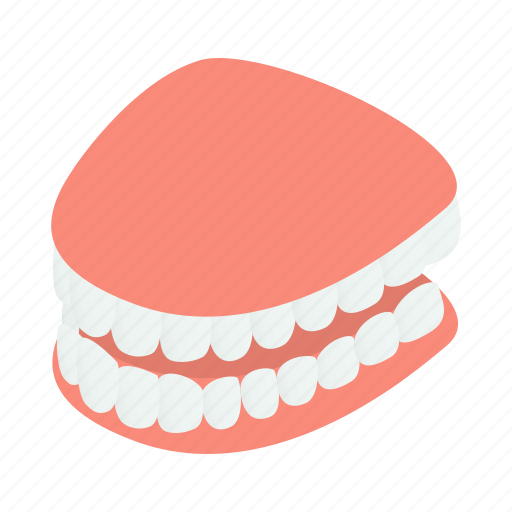 clean, dental, dentist, human, isometric, jaw, tooth icon