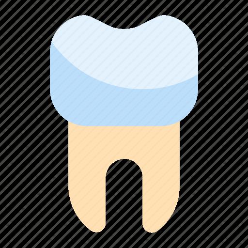Dental, dentist, tooth icon - Download on Iconfinder