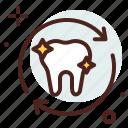 dental, renewal, tooth, dentist, health