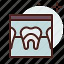 dental, ray, x, stomatology, tooth
