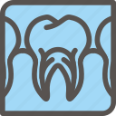 dental, dentist, health, tooth, xray icon