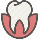 dental, dentist, gum, teeth, tooth icon