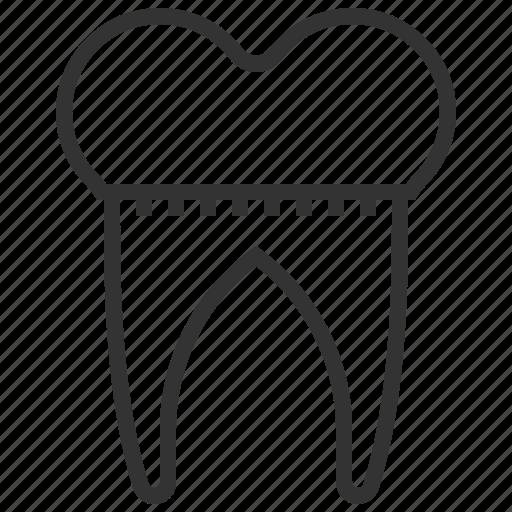 crown, dental, healthcare, medicine, tooth icon